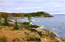 A Hidden Gem in Acadia National Park: Ship Harbor Nature Trail