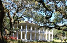 A Scene From the Old South: Eden Gardens in Florida