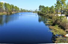 Experience the Real Florida at Big Lagoon State Park, Florida