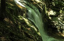 Babbling Falls and Tranquil Hike to Majestic Views: Chapel Brook Falls