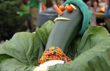 Would You Have The Delight of Dropping In at the Zucchini Fest in West Stockbridge