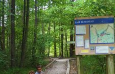 Lake Norman State Park Hiking With Young Kids