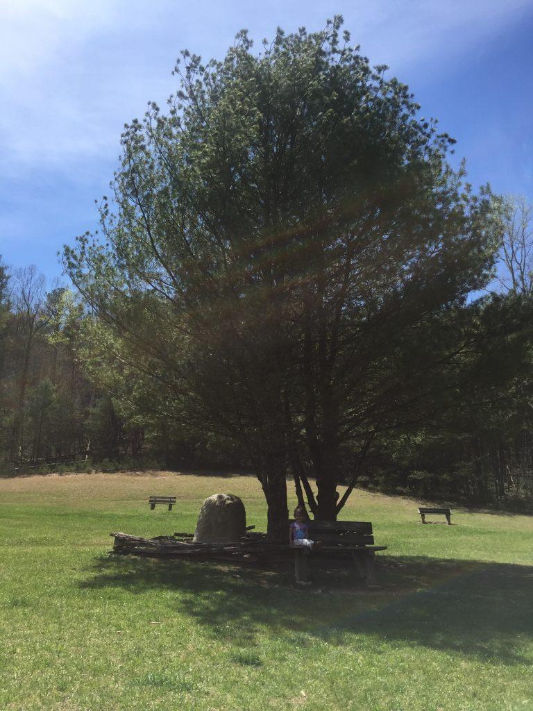 Stone Mountain State Park NC, Elkin, Roaring Gap