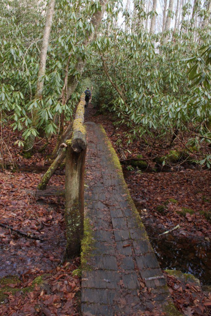 Boone Fork Trail, Blue Ridge Mountains, NC
