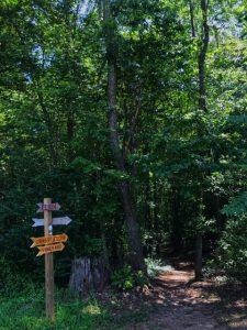 Grassy Creek Trailhead